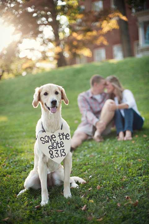 incluir a la mascota nos encanta asi que aca va otro save the date