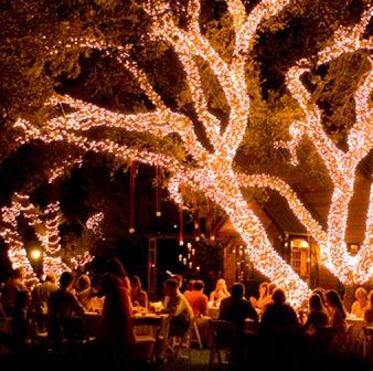 Rodea los árboles con luces navideñas para lograr este elegante look. Te traemos más de 20 ideas para decorar tu boda con luces!
