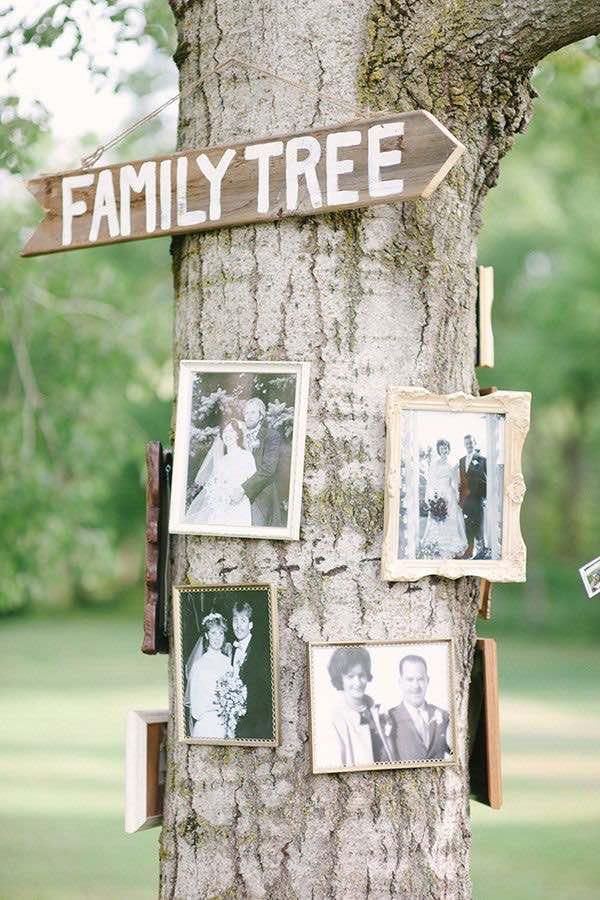 Marcos y fotos alrededor de un árbol mezcla el romanticismo despreocupado del shabby chic con lo rustrico del estilo country.