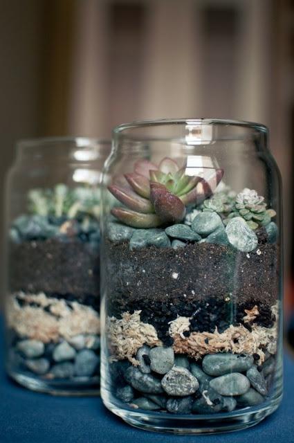 Recuerdos de boda con mason jars. Terrariums con suculentas.