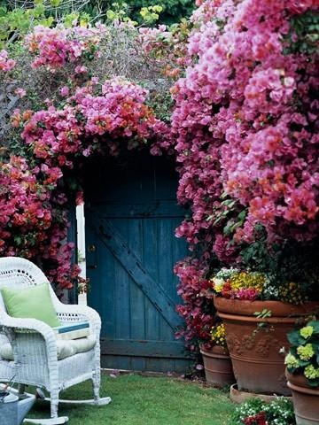 Bougainvilleapara un backdrop de tu boda country chic.