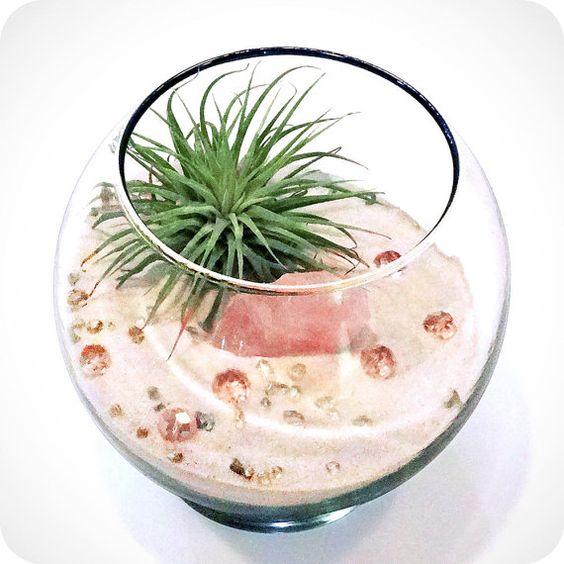 Un terrarium en rosa cuarzo para la decoración de bodas o para regalar a tus invitados.