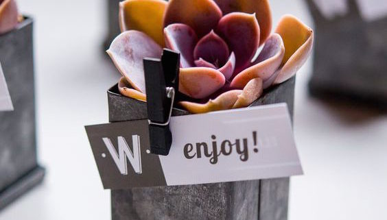 DIY wedding favors with succulents.