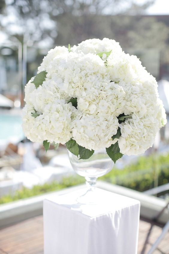 Full white hydrangea centerpiece.