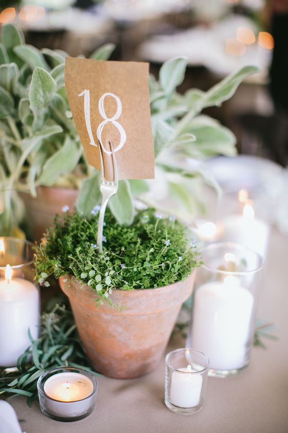 Vintage garden wedding with potted herb centerpieces.