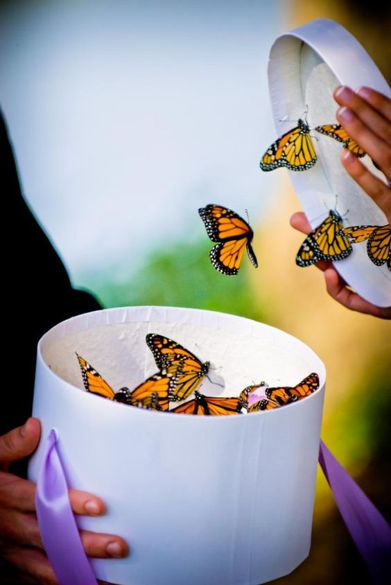 Instead of releasing doves, couples can release butterflies.