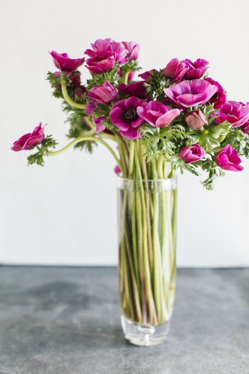 Anemones on a tall vase. Beautiful and elegant and simple to do.