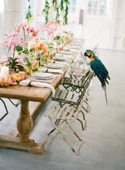 Imagine your wedding. Hanging greenery, colorful flowers as centerpieces, candles in pink votives over a rustic wood table with wooden folding chairs. Parrot optional.