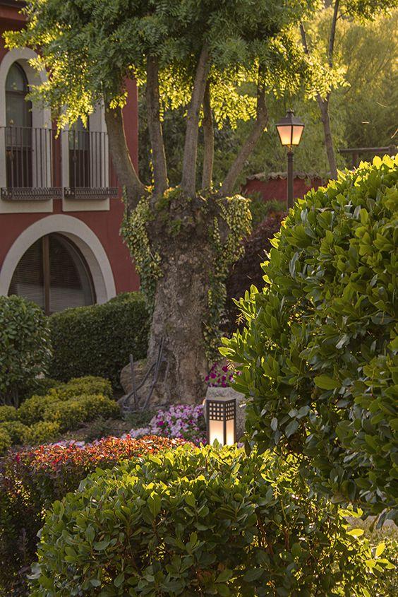 Los jardines de la Hacienda Jacarandá le brindarán un marco increíble a tu fotografía de bodas.
