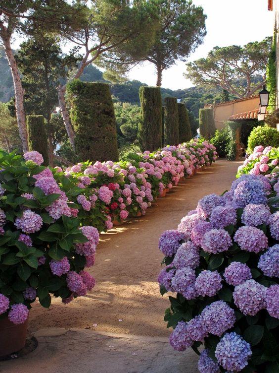 Precioso camino bordeado de flores en El Convent de Blanes, una masía de bodas en Barcelona con vistas al mar.