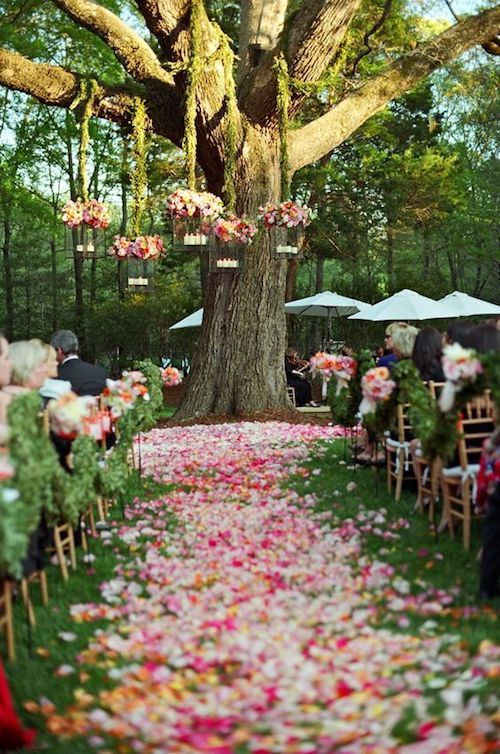 Outdoor wedding venues can help you save money on your wedding and still look like a million bucks. Photographer: Liz Banfield Photo.