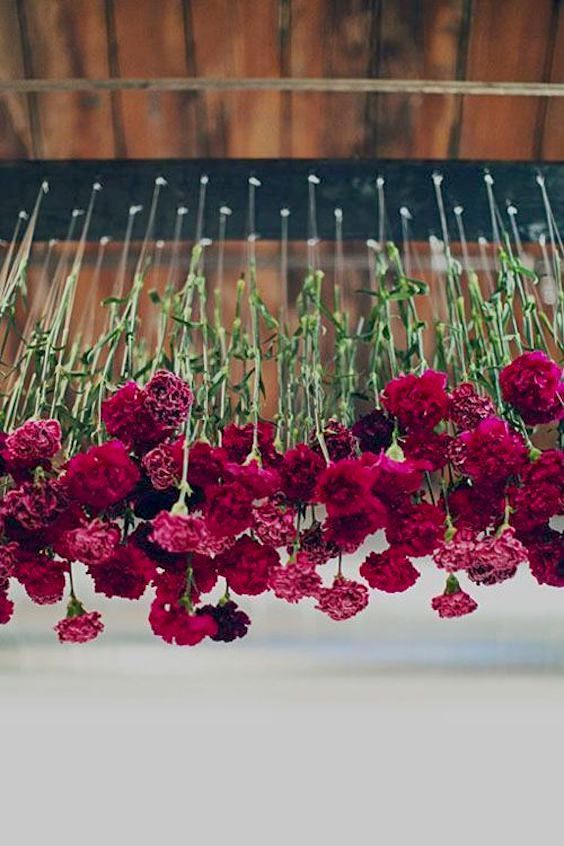 Carnations are super affordable and, hanging from the ceiling, can save you tons of money on your wedding while adding a unique touch to the decor.
