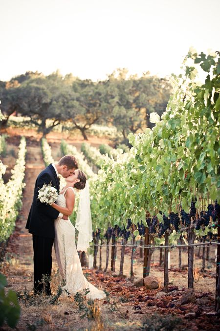 43 Vineyard Wedding Ideas To Plan Your Winery Reception
