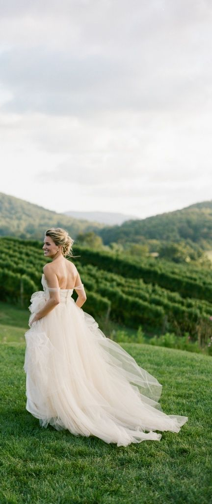 Gorgeous bridal gown against the summer vineyard background.