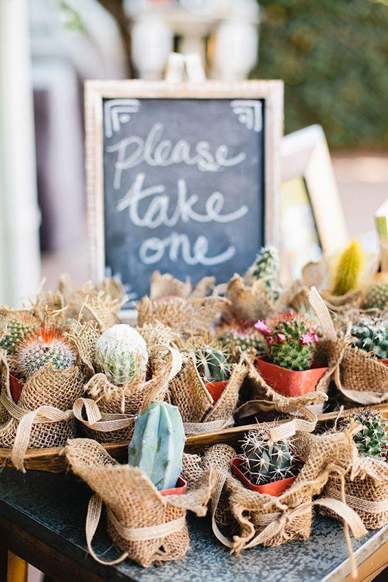 Deja que tus invitados escojan su cactus favorito como recuerdo de bodas. Foto: Megan Walker.