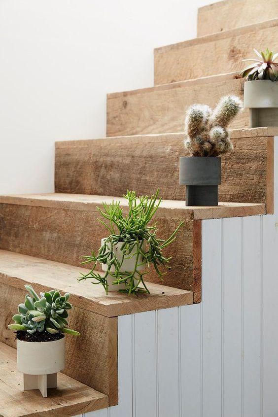 Crea espacios que inspiran con decoración en tendencia y cactus para bodas.