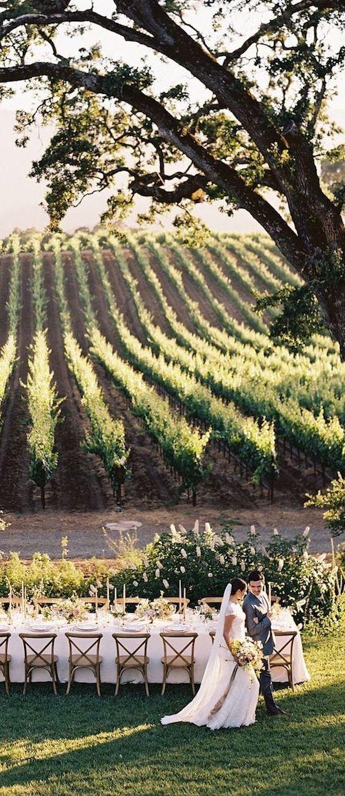 Absolutely stunning fall vineyard wedding.