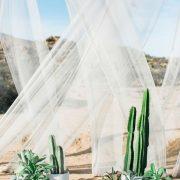 Un fondo de ceremonia único y original inspirada en el desierto con cactus y plantas en macetas de RO & Co Events.