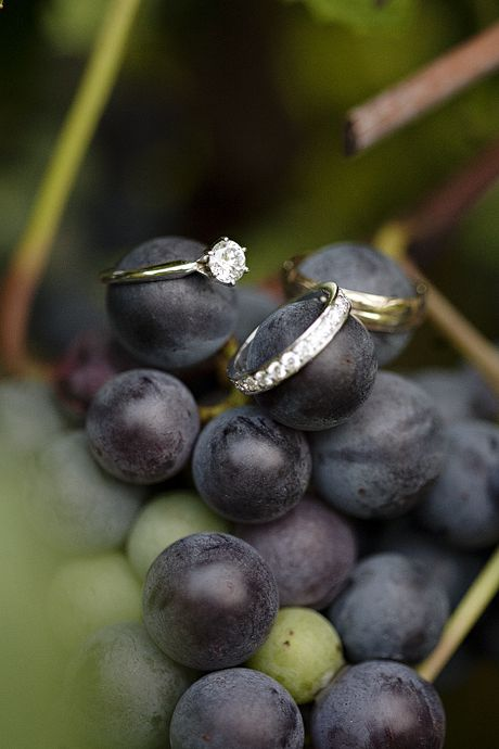 Vineyard wedding ring shot. Photography: Kristen Gardner Photo.