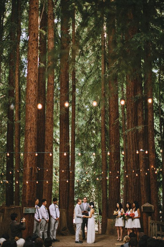 Pop-up weddings in the woods.