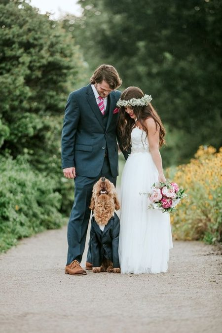 This handsome Goldendoodle steals the shot. Moira Photography.