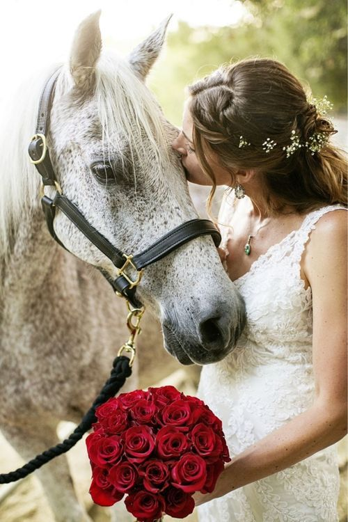 Adorable ways to include pets in your wedding. Pick from a styled photoshoot, riding your horse or a sweet flower crown.