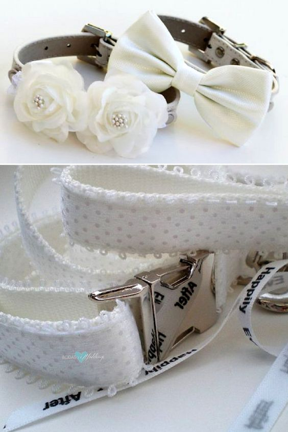 White collars with flowers and bows and matching leash for your best pups.