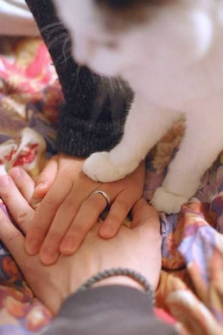 Paw of approval. This is one of the cutest wedding photos I have ever seen.