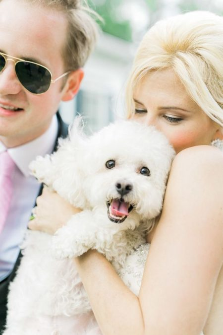 Pets at weddings and naturally beautiful images to treasure for a lifetime. Catherine Ann Photography.