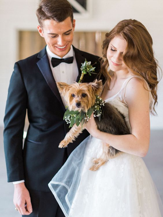 This Yorkie is loving the attention! Pets in weddings. Photo: Ava Moore Photography.