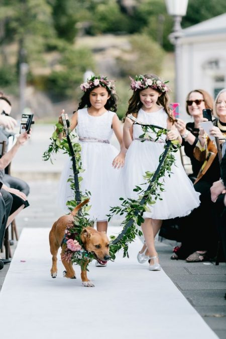What can beat your puppy leading the flower girls at your wedding ceremony? Emily Wren Photography.