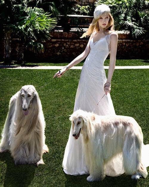 El día de tu boda querrás lucir espléndida y tu pelo no debe quedarse atrás.