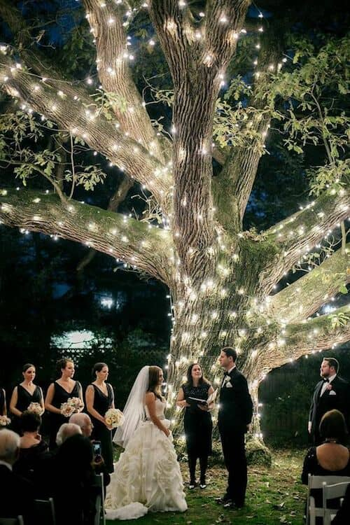 Instead of hanging lights from a tree, wrap them around it and achieve this magnificent lightning effect. Pennsylvania wedding at Aldie Mansion.
