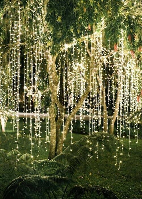 Awe-struck wedding reception tree lighting ideas.