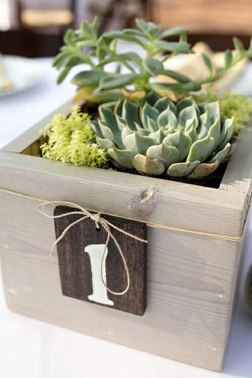 Creative ways to use potted plants in your wedding decor.