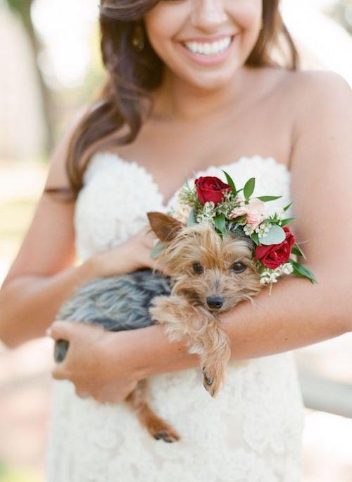 Una corona de flores estilo Frida Kahlo es una idea genial para incluir mascotas en tu boda. Mint photography.