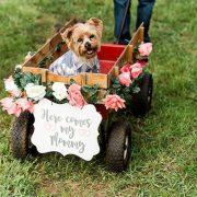 Un adorable atuendo y un carrito adornado con flores es todo lo que precisas para incluir a tus mascotas en tu boda. Megan Kay Photography. North Texas.