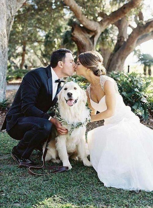 Malva super feliz con participar en la boda de sus humanos.