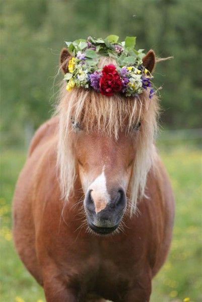 El pony mas boho y adorable de todos.