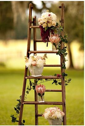 Rustic or garden old wooden ladder wedding ideas with ivy and potted plants.