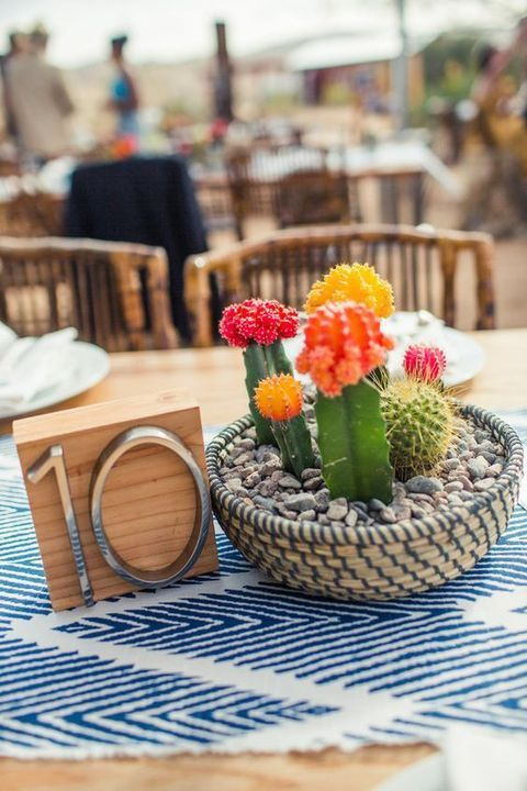 A cacti summer centerpiece you can make weeks in advance!