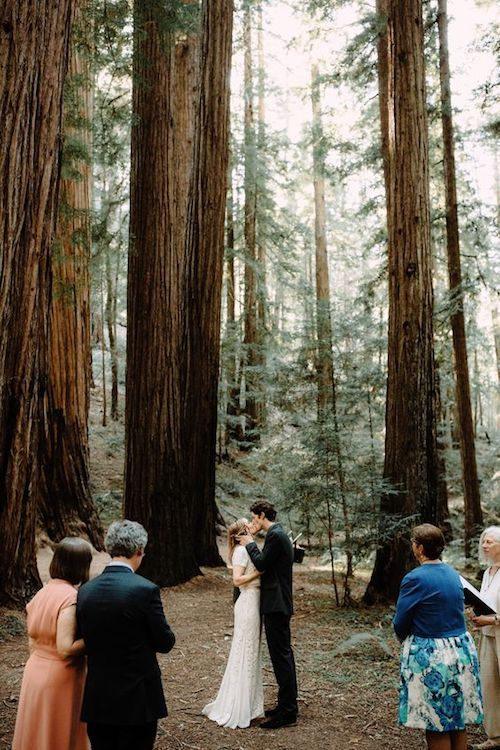Una boda íntima en el Redwood Forest en California. Brad and Jen Nashville wedding photographers.