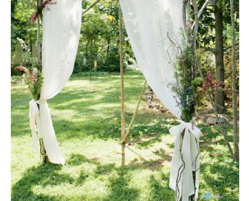 A simple arch made with white birch branches, fabric and dried flowers.