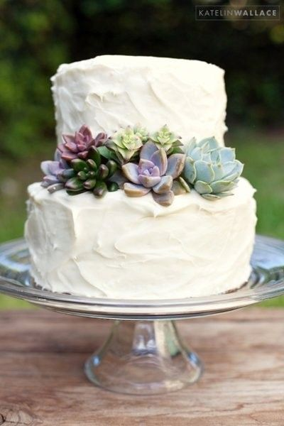 Simple and delicious cake ideas for intimate destination weddings with succulents. Katelin Wallace Photo.