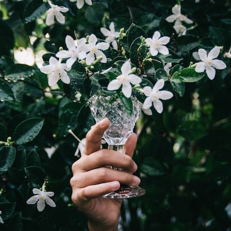 Arreglo floral con jazmines del país en una copa de plástico. Ideas para ahorrar en tu boda sin perder el encanto.