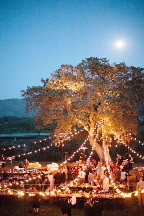 ¿Sabes cómo sentar a los invitados en tu boda para que tu fiesta sea un éxito? ¡Descúbrelo en el blog!