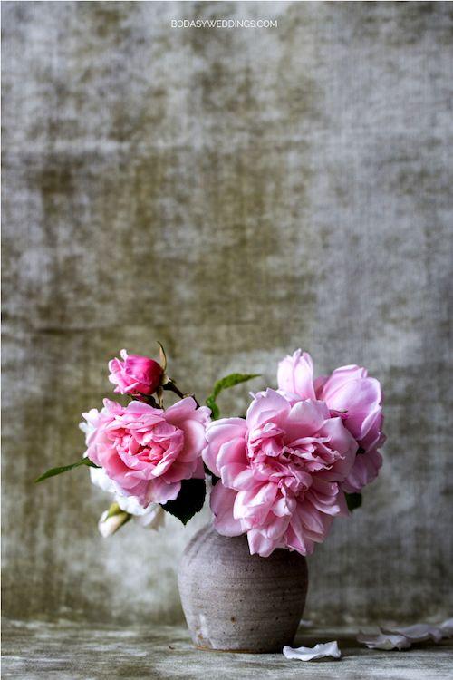 Regala unas flores rosas en el día del amor.